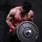 wesley lodder bodybuilding foxgym